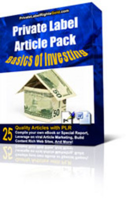 Product picture Basics of Investment  or Investing plr Articles Download