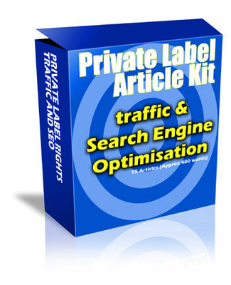 Product picture Website Traffic and SEO Guide plr Articles Download